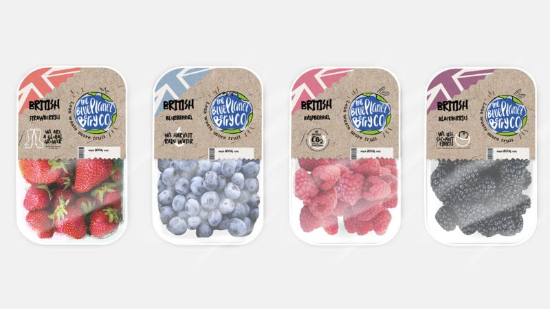 blue planet berry co initial packaging design