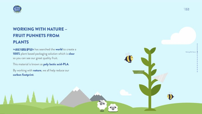 blue planet berry co website about page