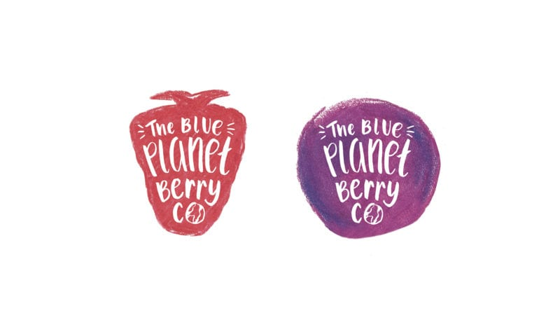blue planet berry co strawberry and blueberry designs